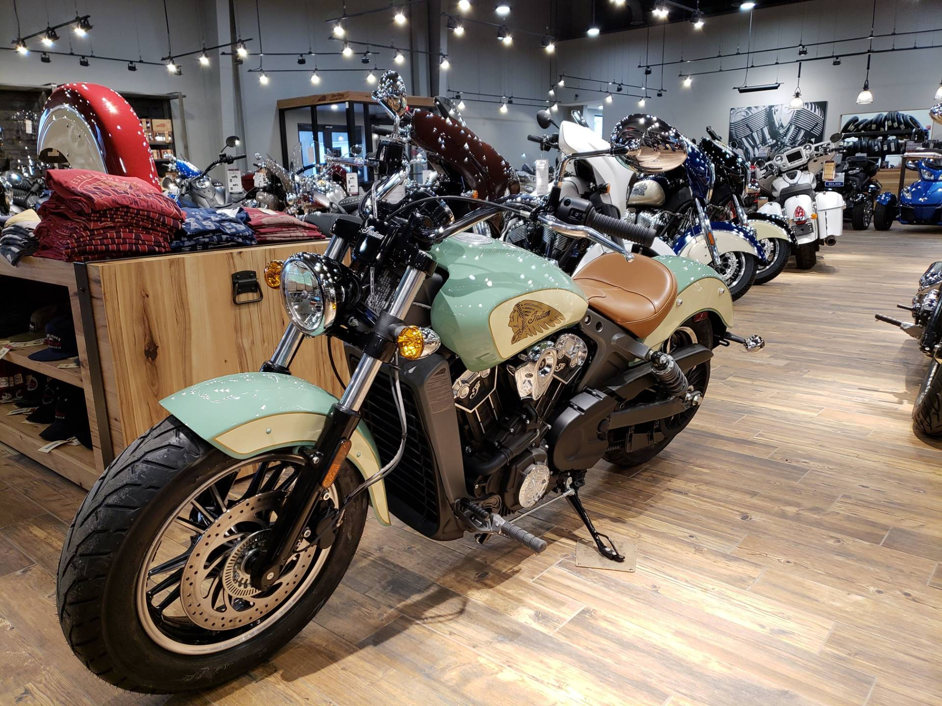 new 2019 indian scout® abs willow green / ivory cream | motorcycles