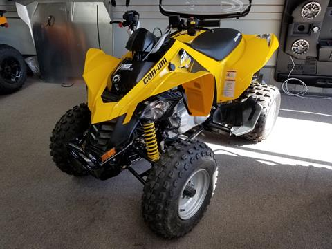 2019 Can-Am DS 250 in Mineral Wells, West Virginia - Photo 1