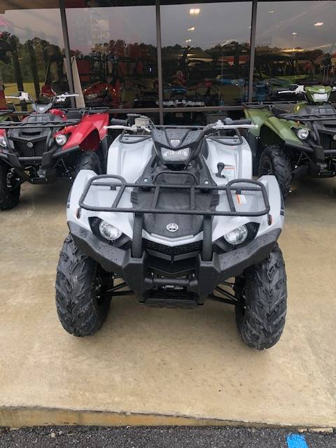 2020 Yamaha Kodiak 450 EPS SE in Bessemer, Alabama - Photo 6