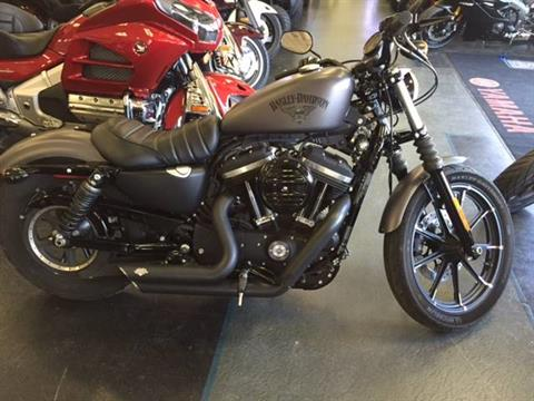 2016 Harley-Davidson Iron 883™ in Bessemer, Alabama