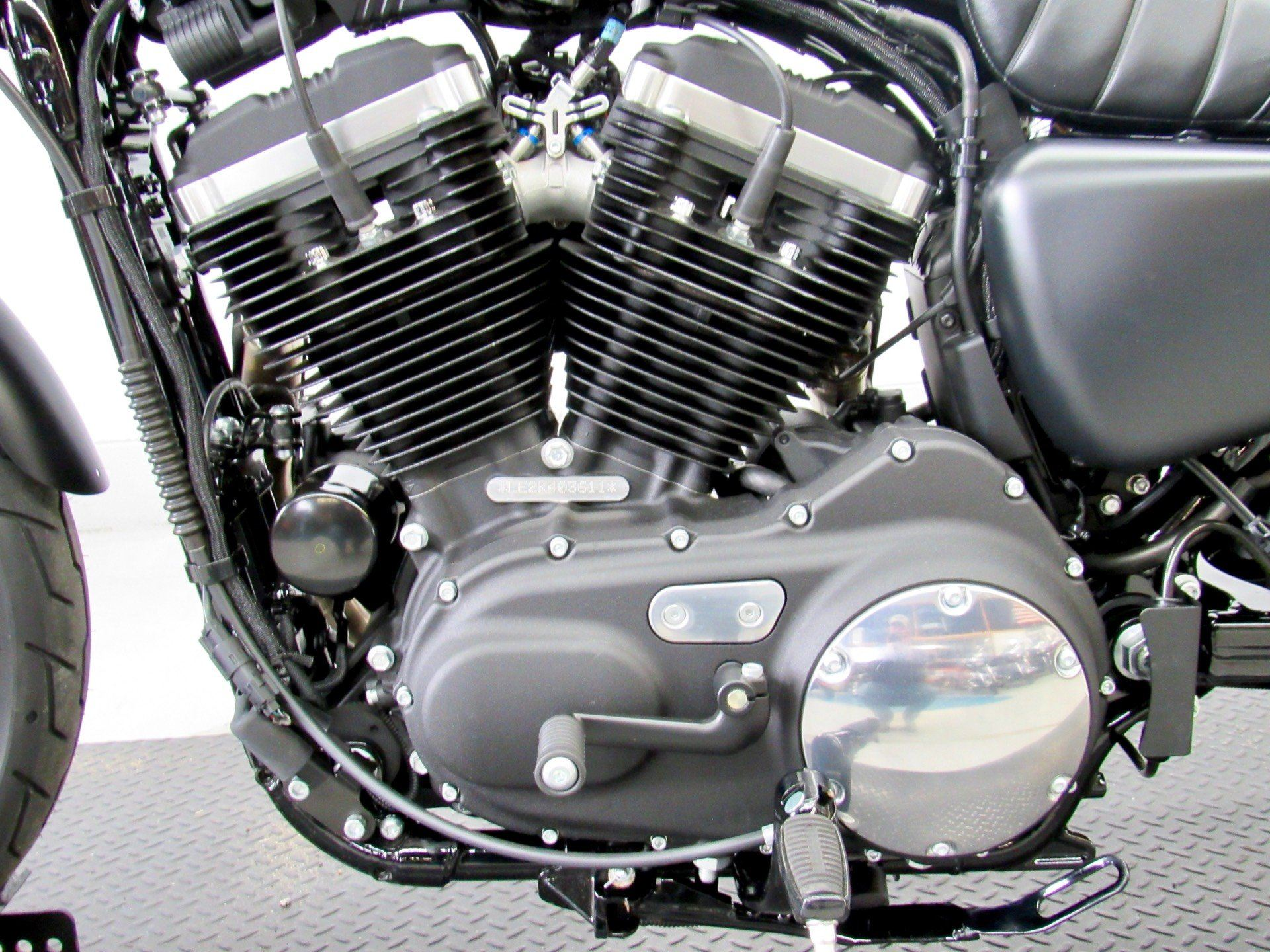 2019 Harley-Davidson Iron 883™ in Fredericksburg, Virginia