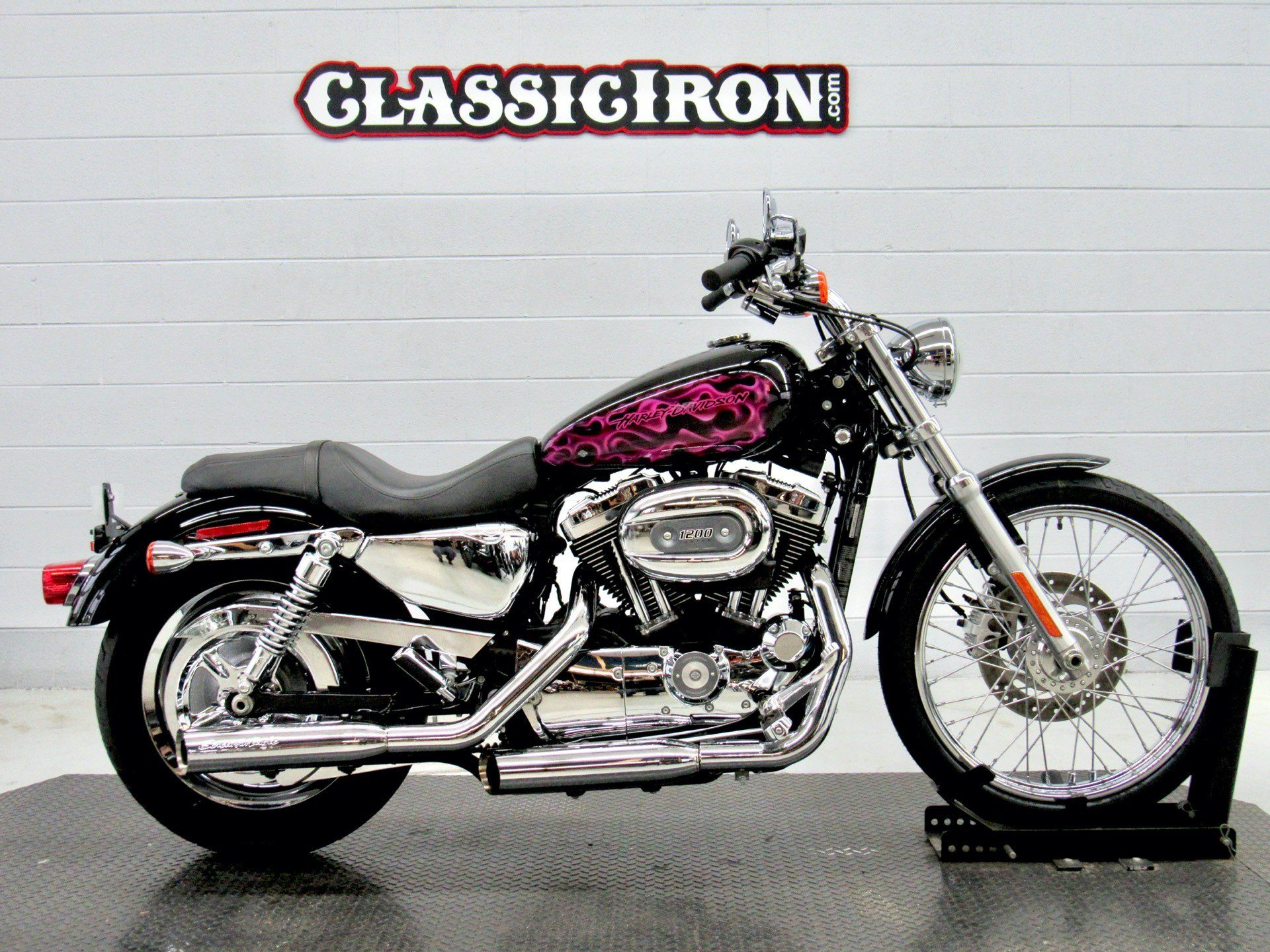 2008 Harley-Davidson Sportster® 1200 Custom in Fredericksburg, Virginia - Photo 2