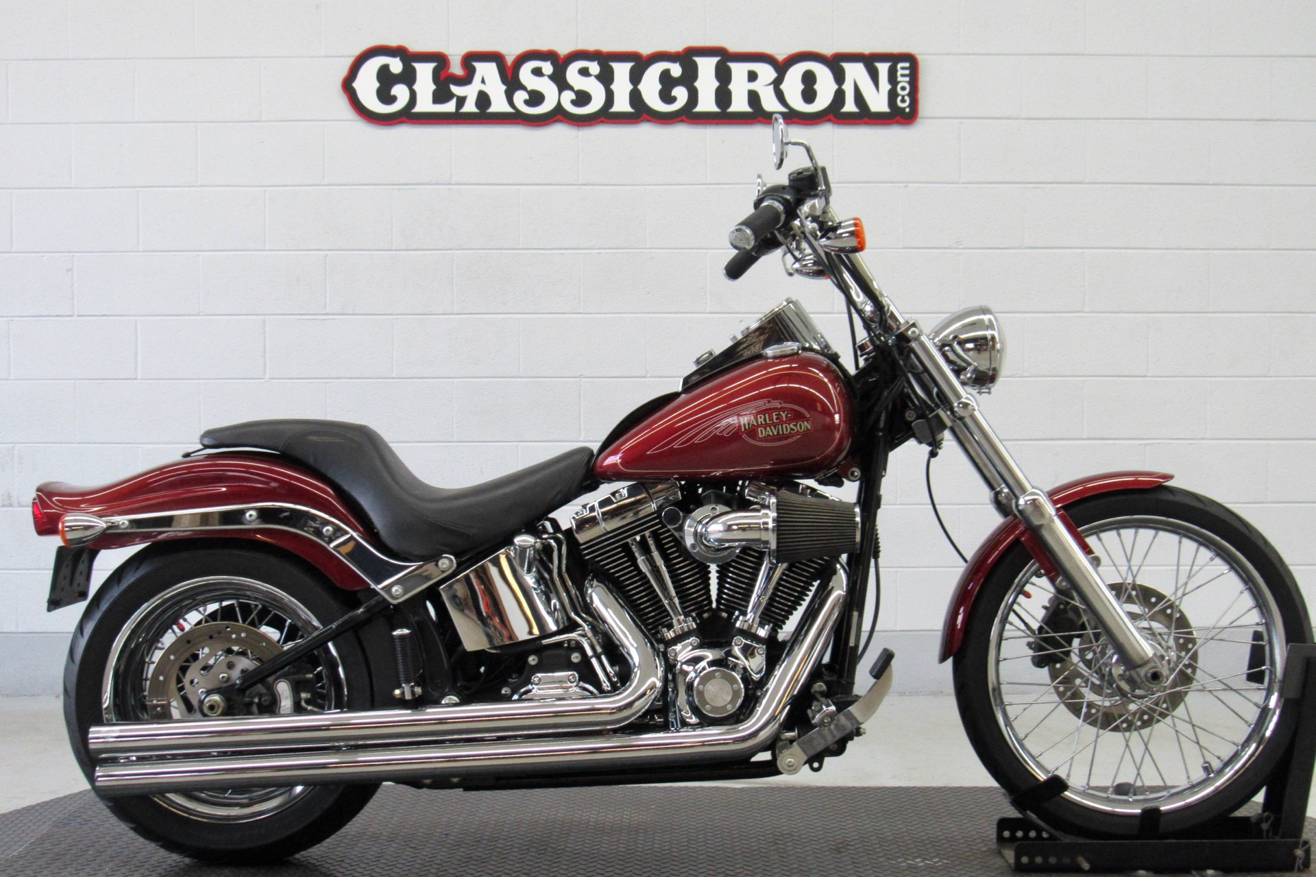 2009 Harley-Davidson Softail® Custom in Fredericksburg, Virginia - Photo 1