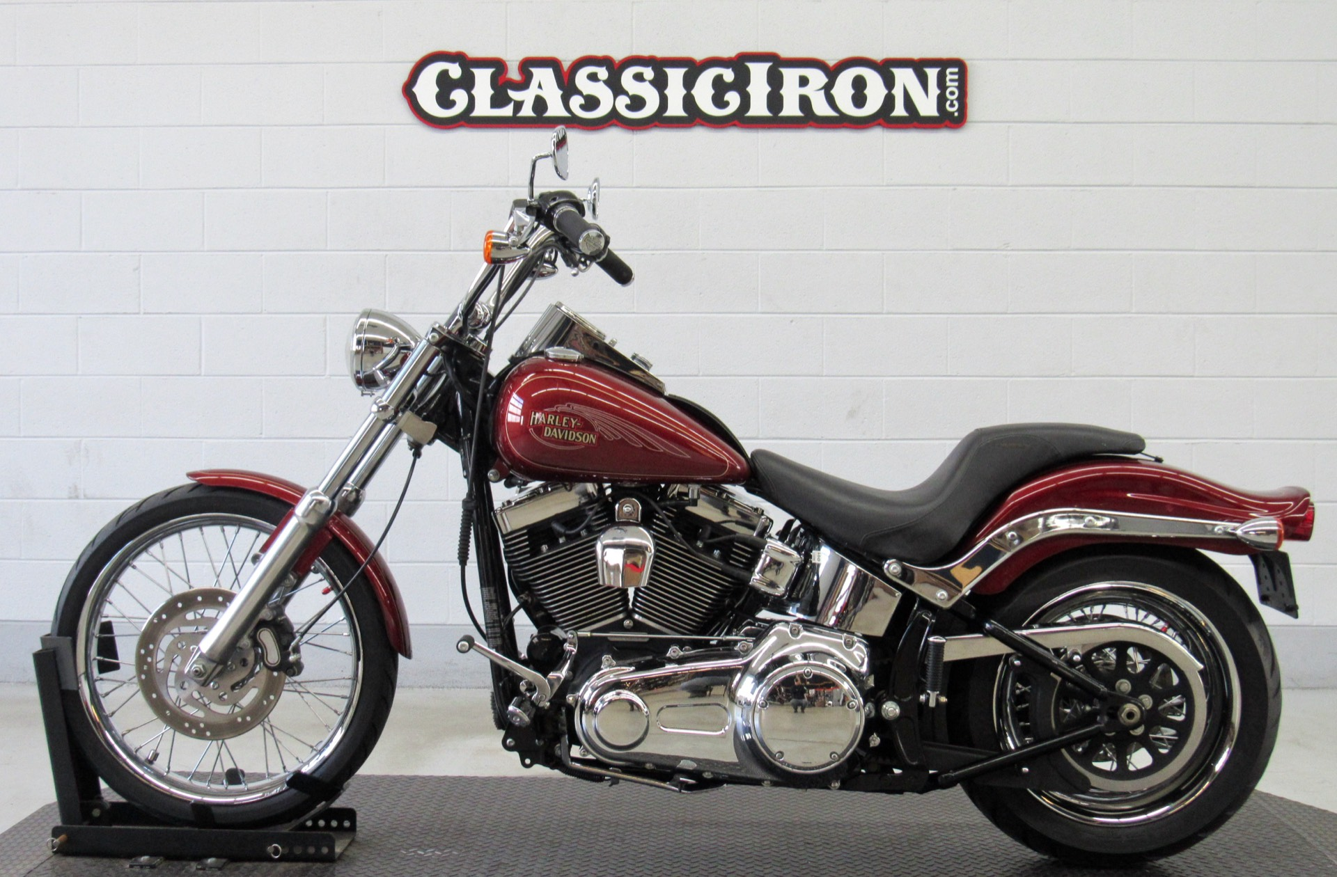 2009 Harley-Davidson Softail® Custom in Fredericksburg, Virginia - Photo 4
