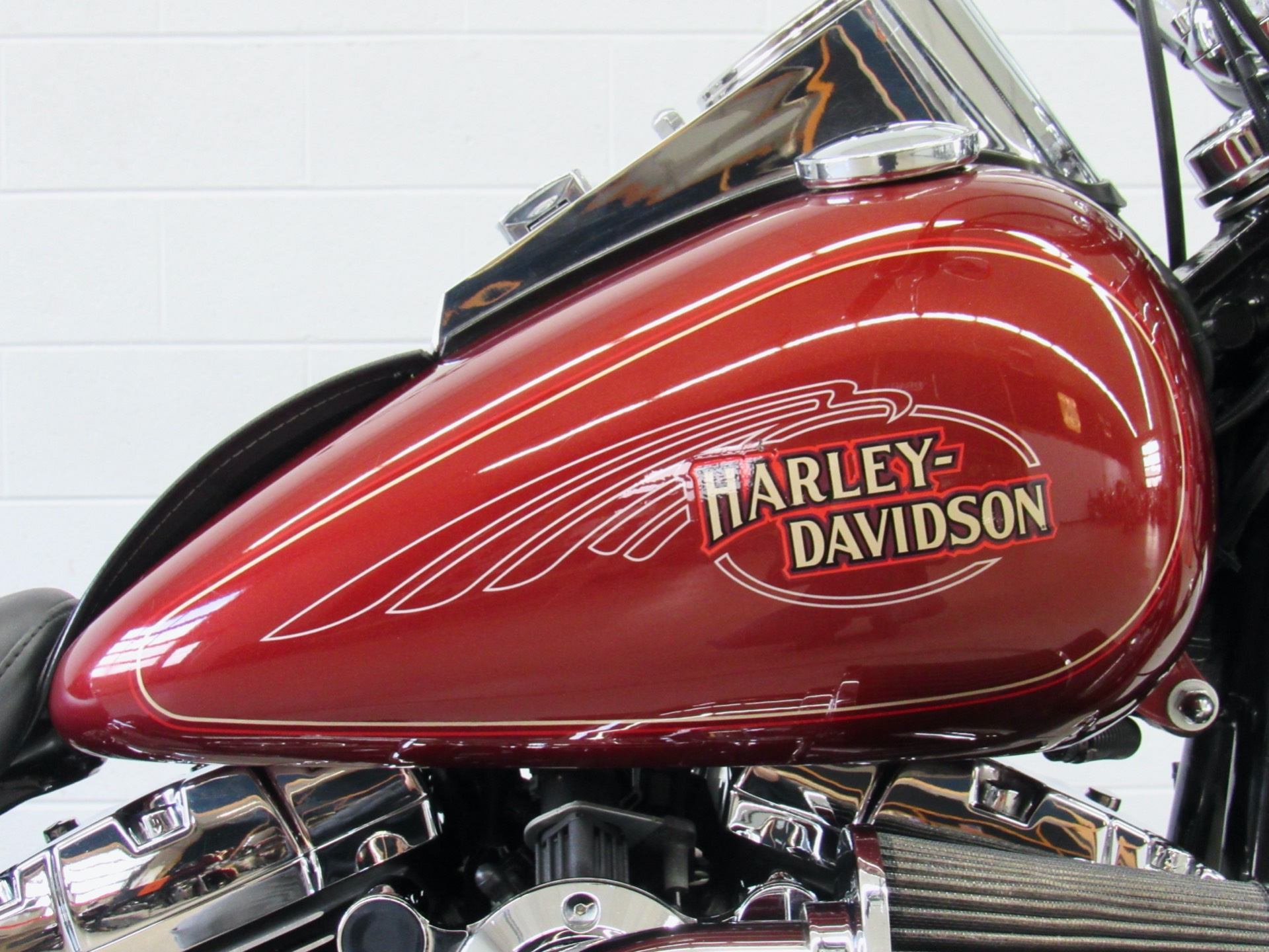 2009 Harley-Davidson Softail® Custom in Fredericksburg, Virginia - Photo 13