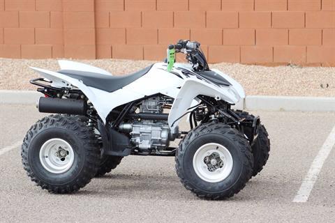 2017 Honda TRX250X in Kingman, Arizona