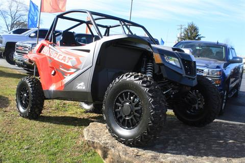2021 Arctic Cat Wildcat XX in Campbellsville, Kentucky - Photo 1