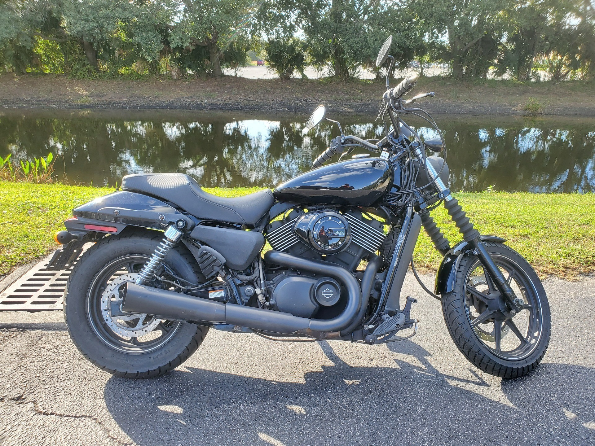 2015 Harley-Davidson Street™ 750 in Sarasota, Florida - Photo 1