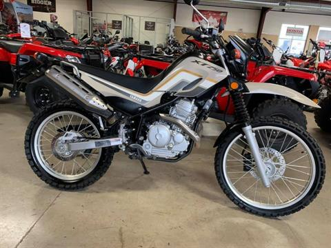 2019 Yamaha XT250 in Stillwater, Oklahoma - Photo 1