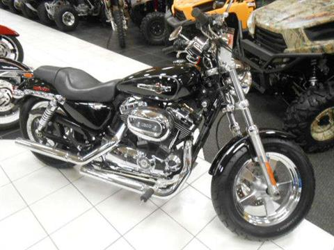 2011 Harley-Davidson Sportster® 1200 Custom in Chanute, Kansas