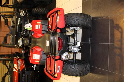2019 Honda FourTrax Rancher 4x4 in Chanute, Kansas - Photo 2
