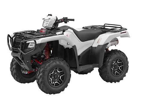 2016 Honda FourTrax Foreman Rubicon 4x4 Automatic DCT EPS Deluxe in Chanute, Kansas