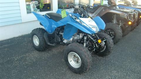 2020 Honda TRX250X1L in Lincoln, Maine - Photo 1