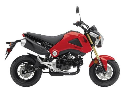 2014 Honda Grom in Lincoln, Maine