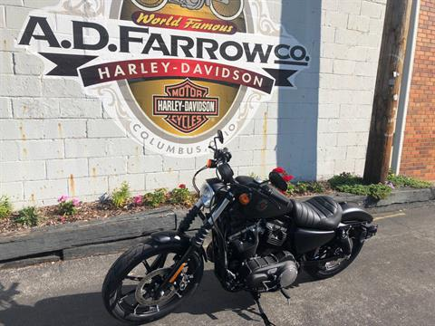 2019 Harley-Davidson Iron 883™ in Sunbury, Ohio