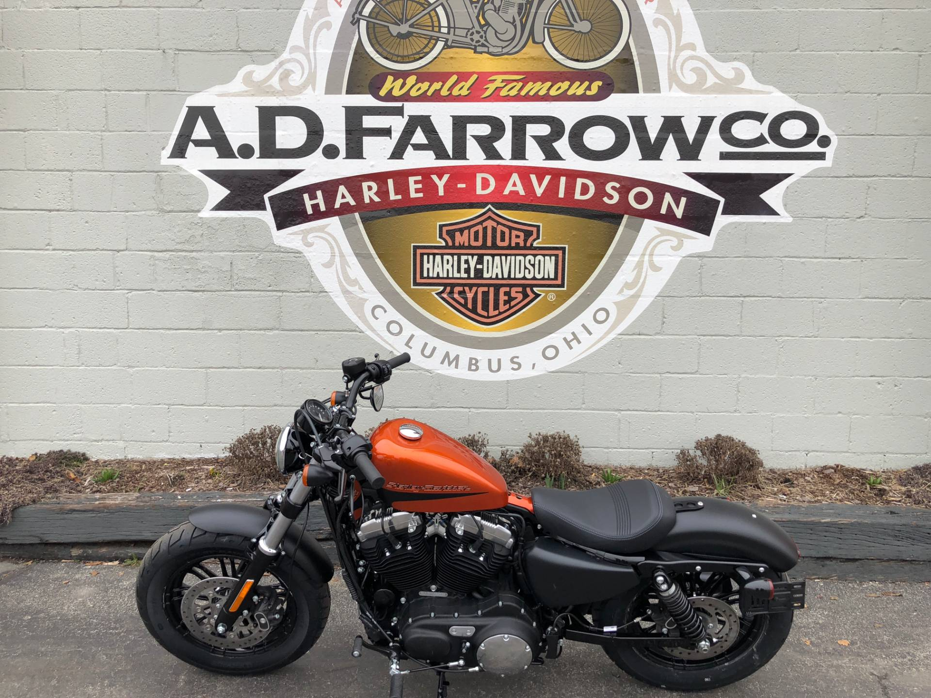 2019 Harley-Davidson XL1200N in Sunbury, Ohio