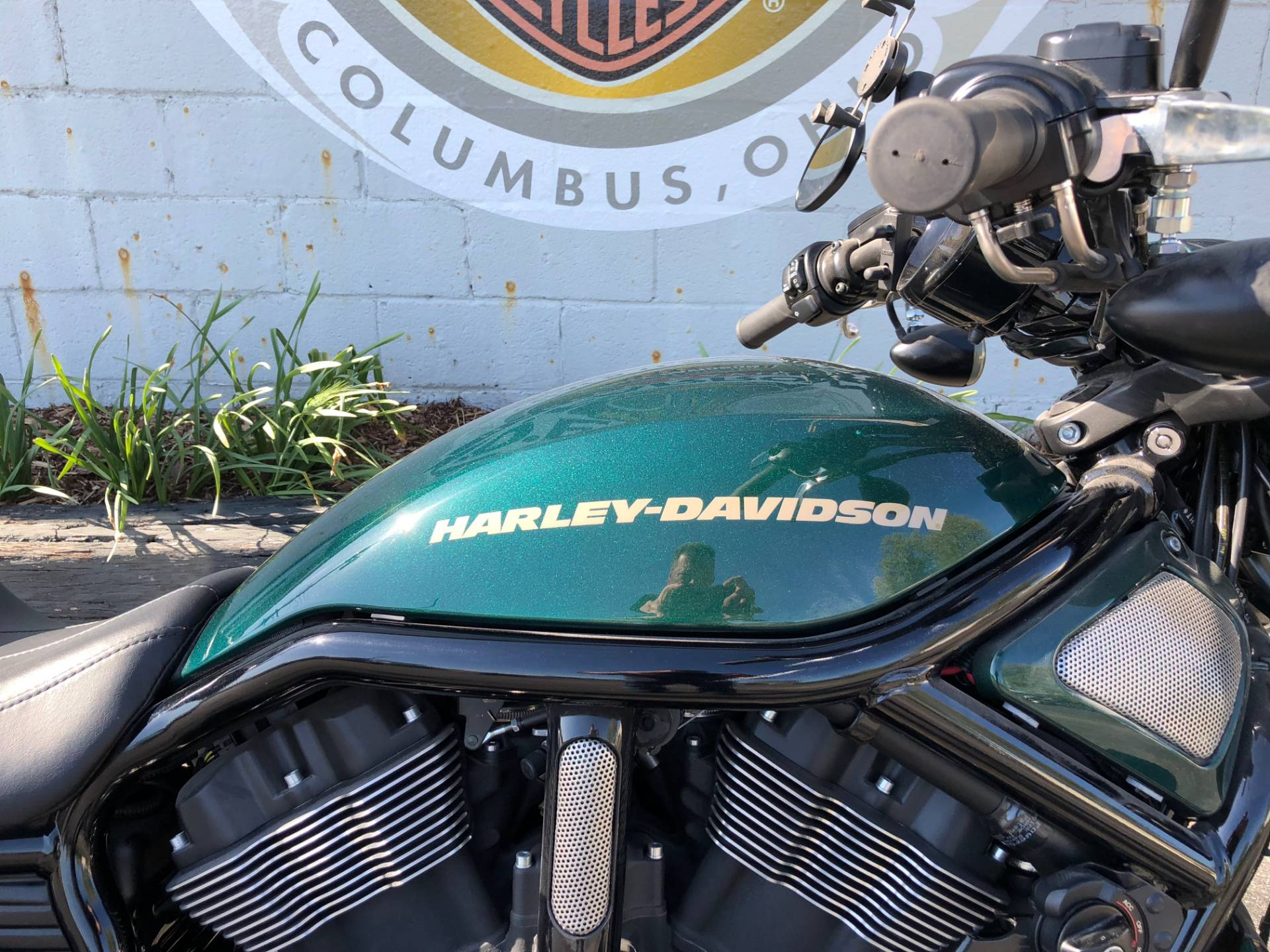 2015 Harley-Davidson Night Rod® Special in Sunbury, Ohio