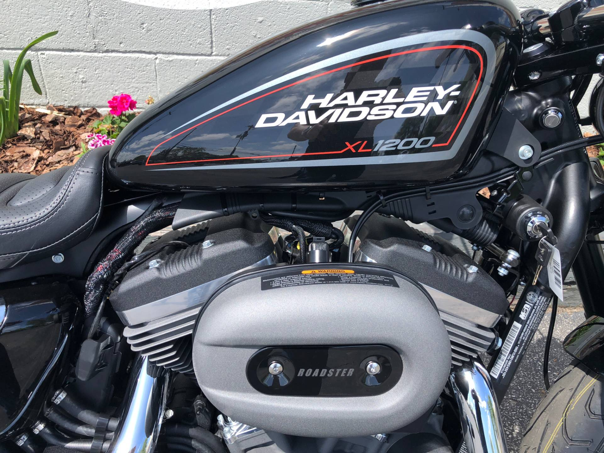 2019 Harley-Davidson Roadster™ in Sunbury, Ohio - Photo 7