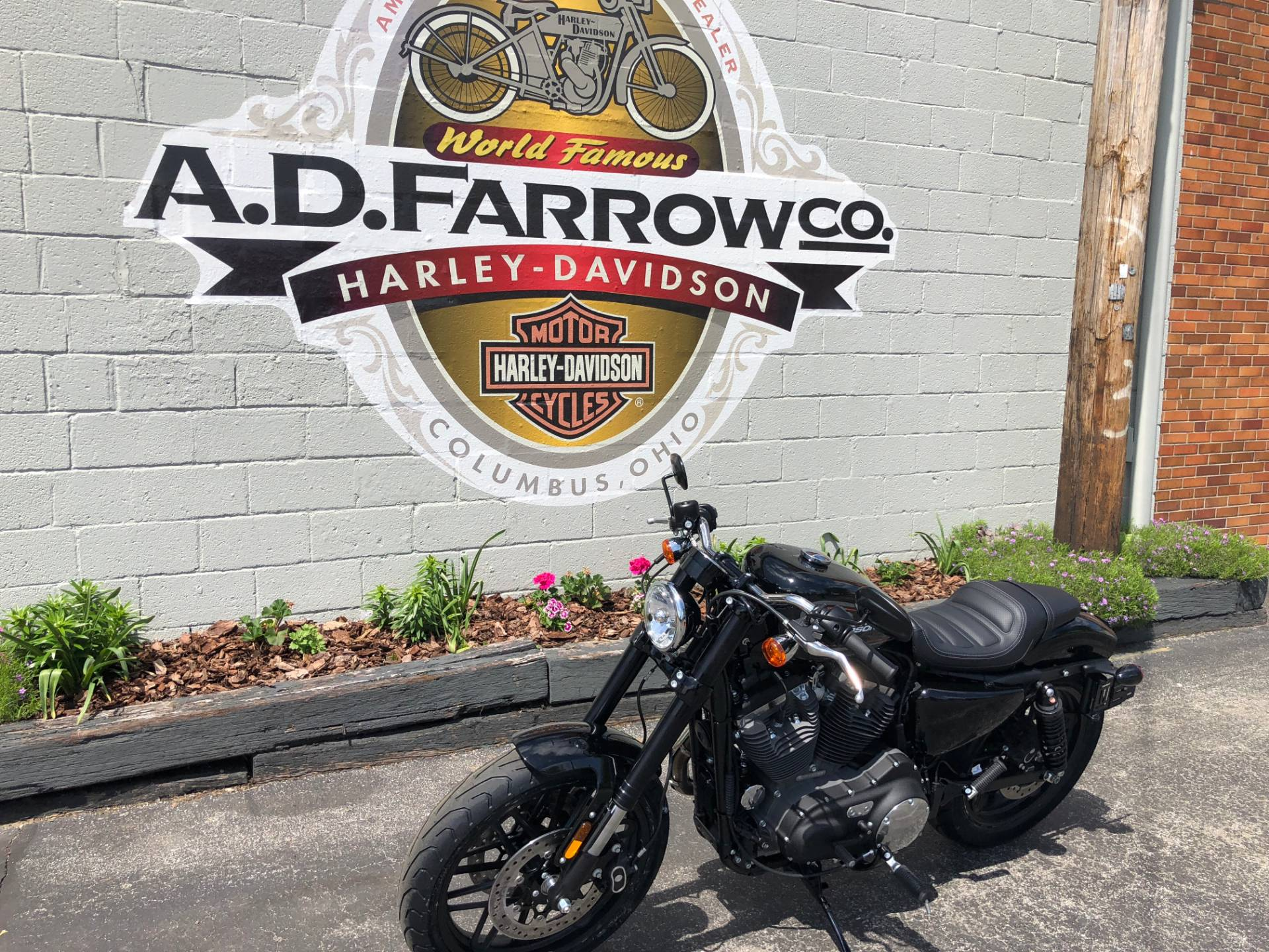 2019 Harley-Davidson Roadster™ in Sunbury, Ohio - Photo 5