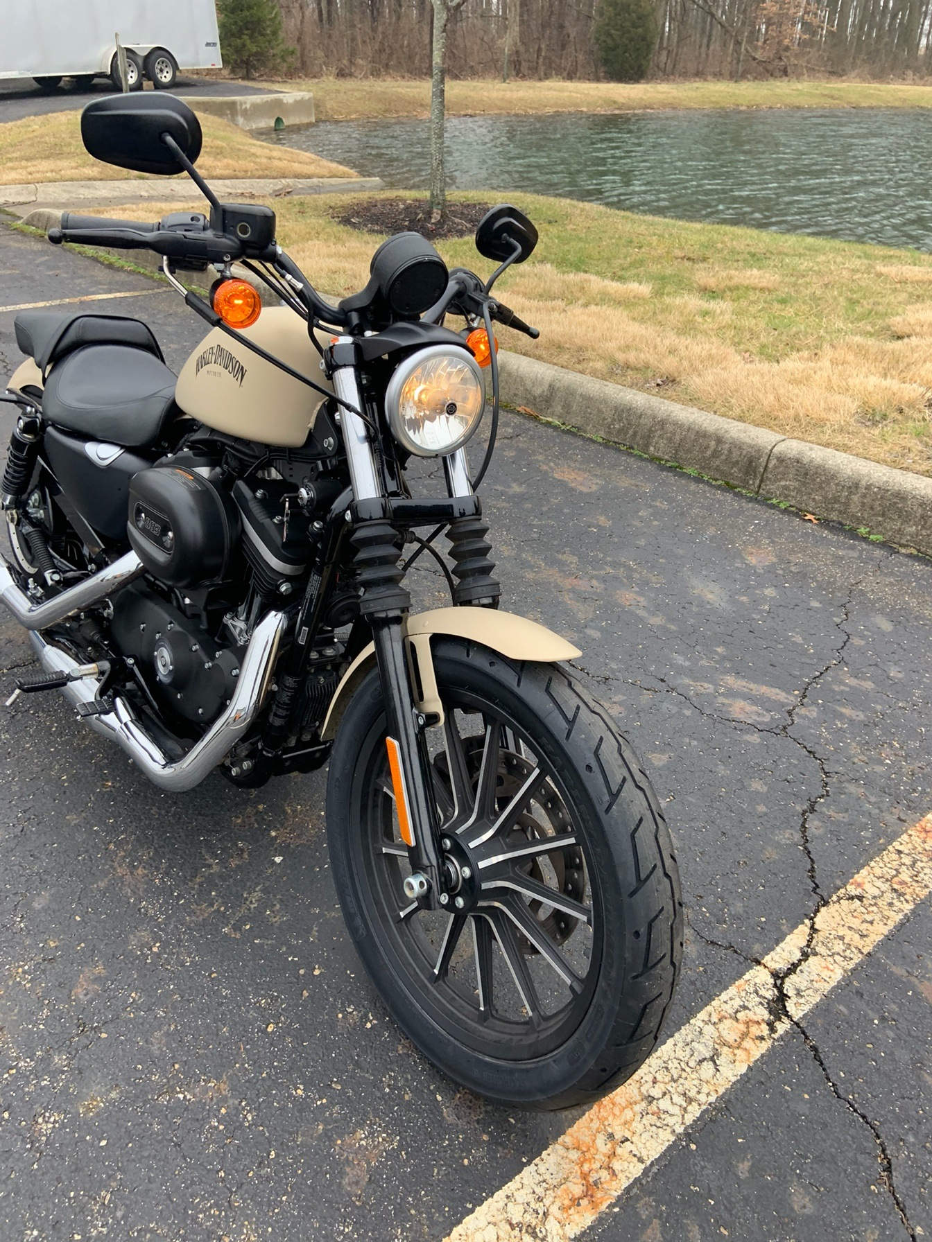 2014 Harley-Davidson Sportster® Iron 883™ in Sunbury, Ohio - Photo 4