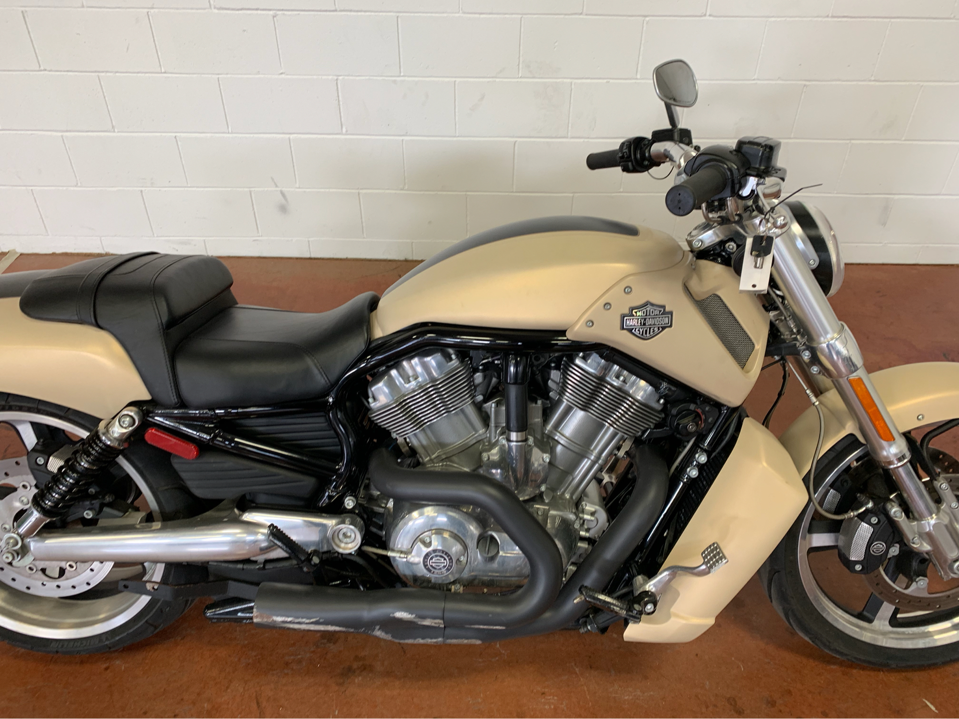 2015 Harley-Davidson V-Rod Muscle® in Sunbury, Ohio