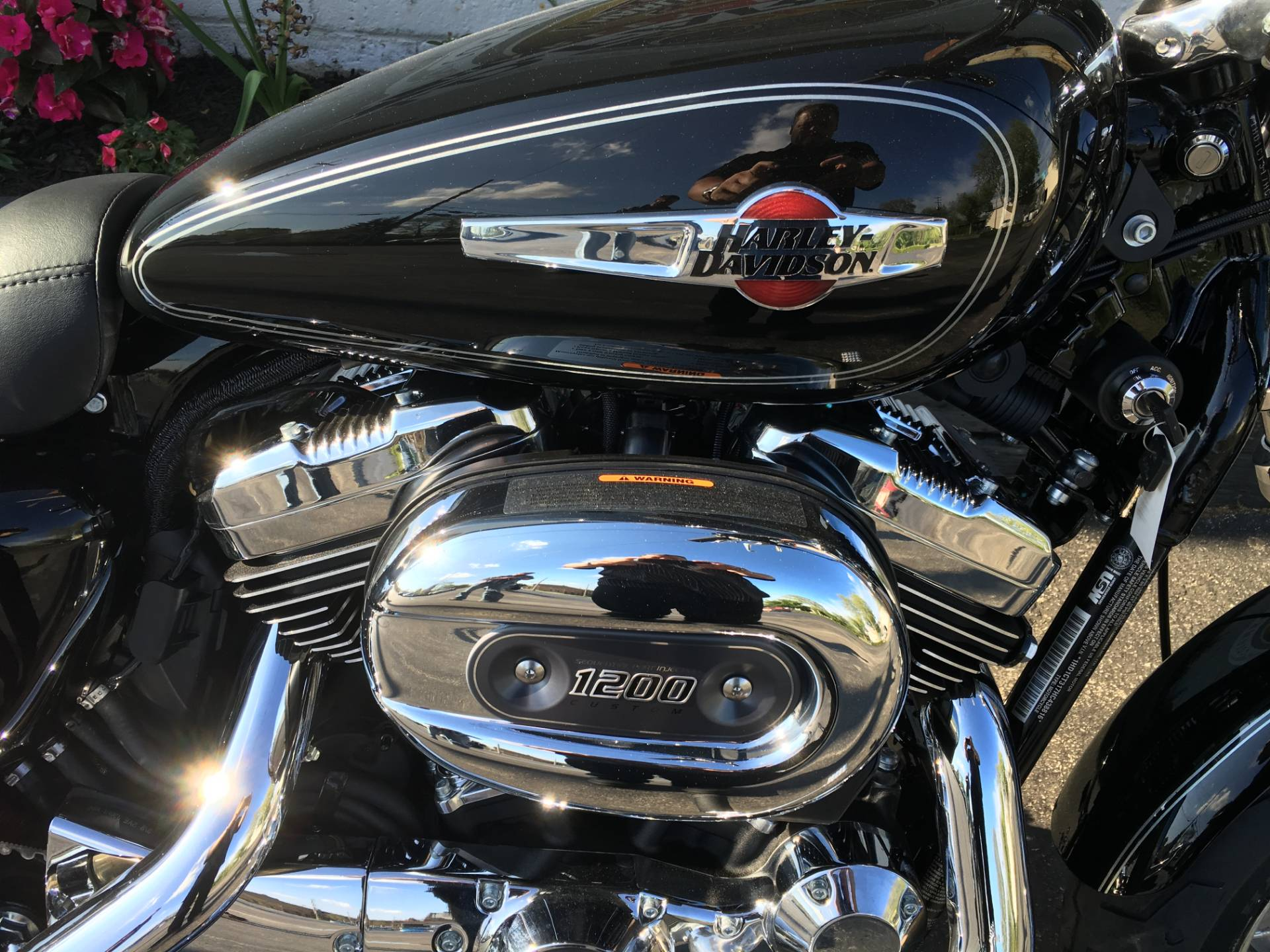 2017 Harley-Davidson 1200 Custom in Sunbury, Ohio