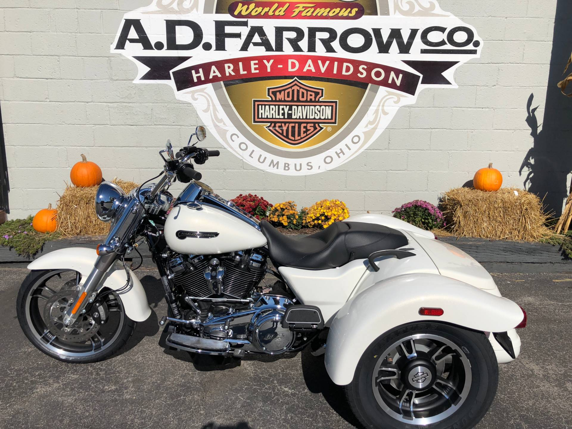 2019 Harley-Davidson Freewheeler® in Sunbury, Ohio - Photo 3