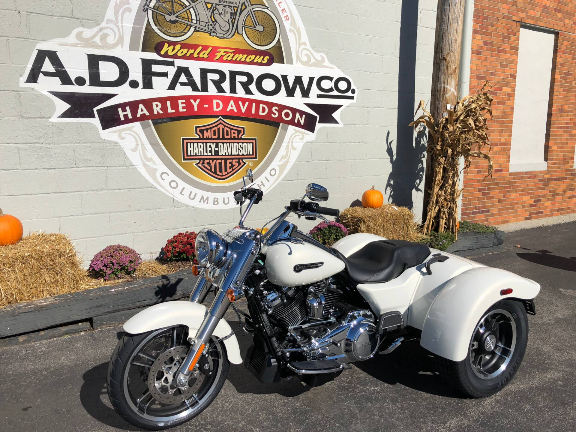 2019 Harley-Davidson Freewheeler® in Sunbury, Ohio - Photo 5