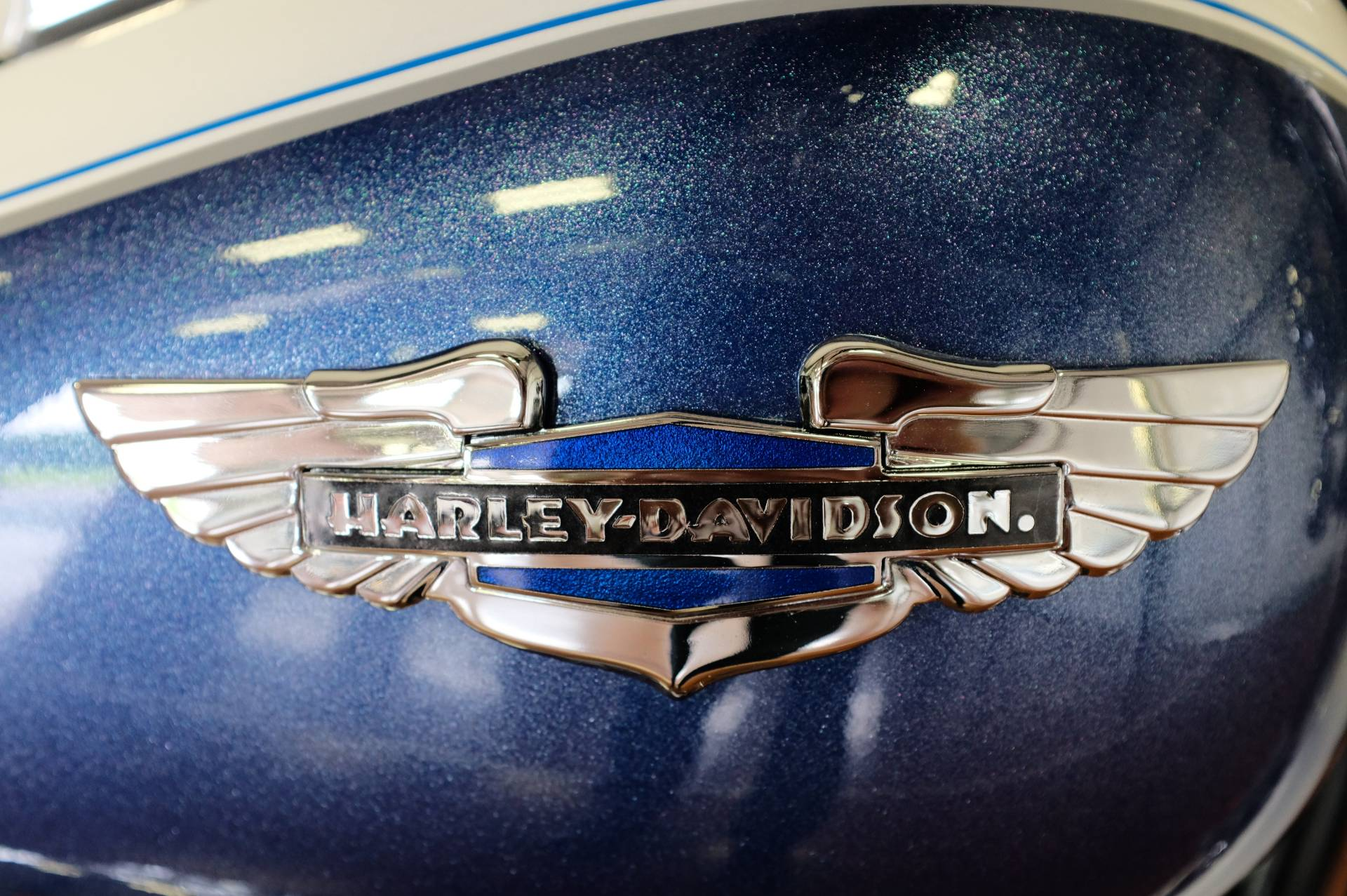2015 Harley-Davidson Softail® Deluxe in Sunbury, Ohio - Photo 3