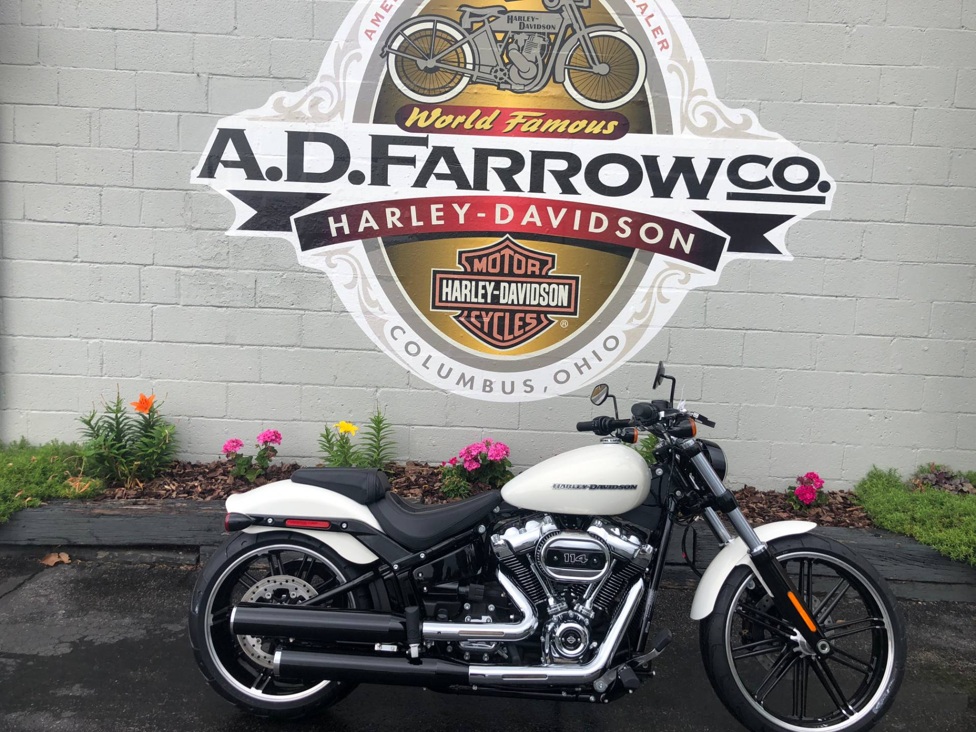 2019 Harley-Davidson Breakout® 114 in Sunbury, Ohio - Photo 1