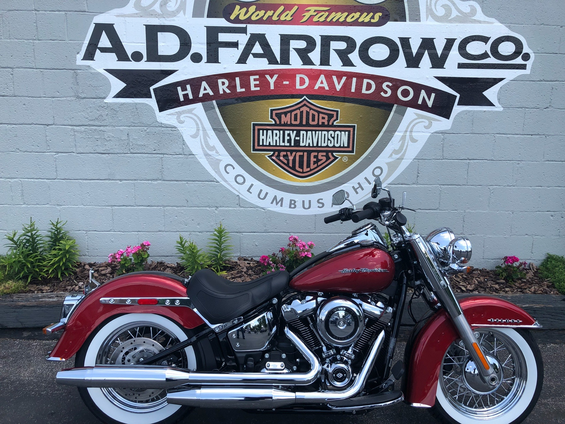 2019 Harley-Davidson Deluxe in Sunbury, Ohio - Photo 1