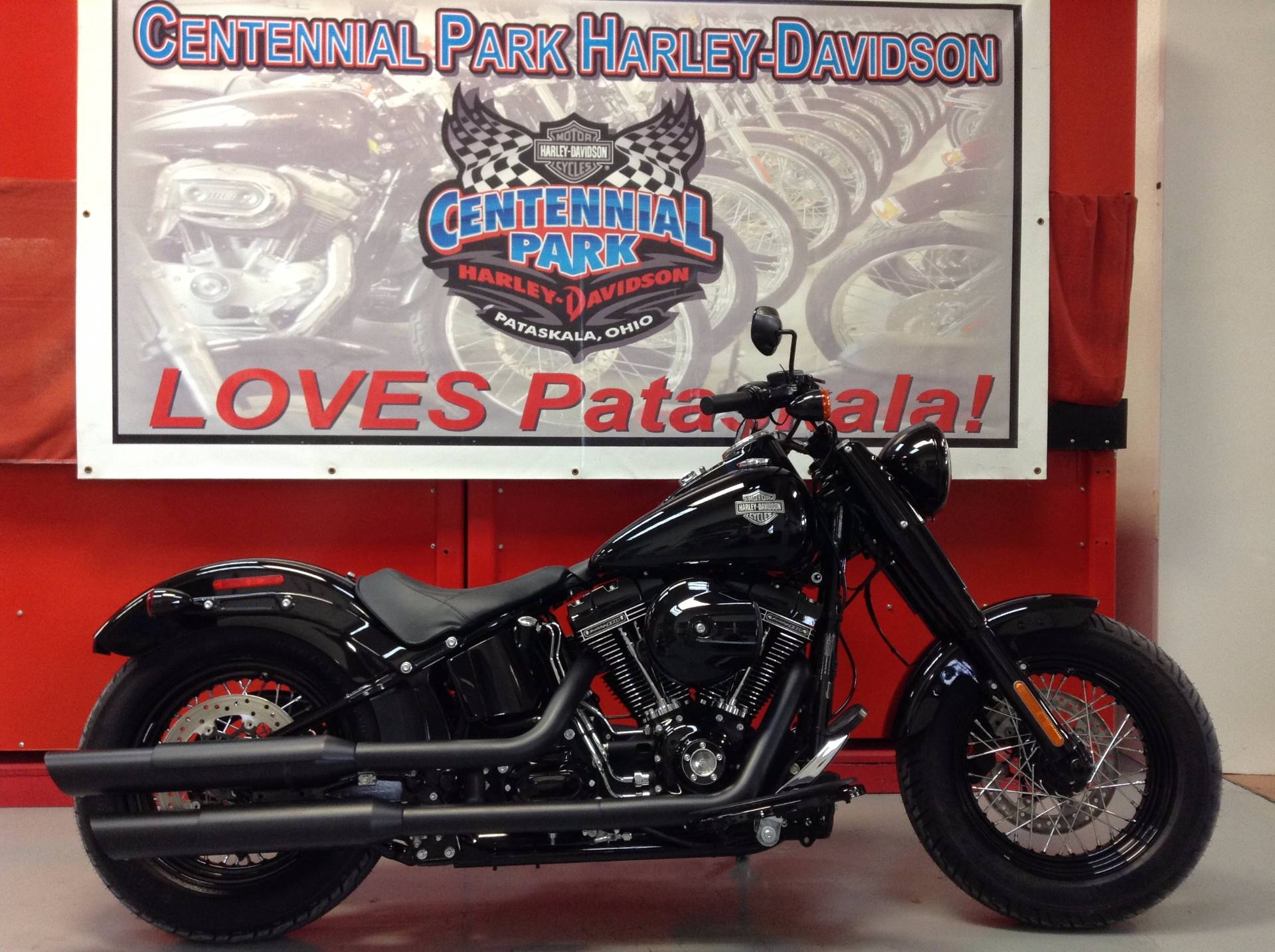 2017 Harley-Davidson Softail Slim® S in Sunbury, Ohio