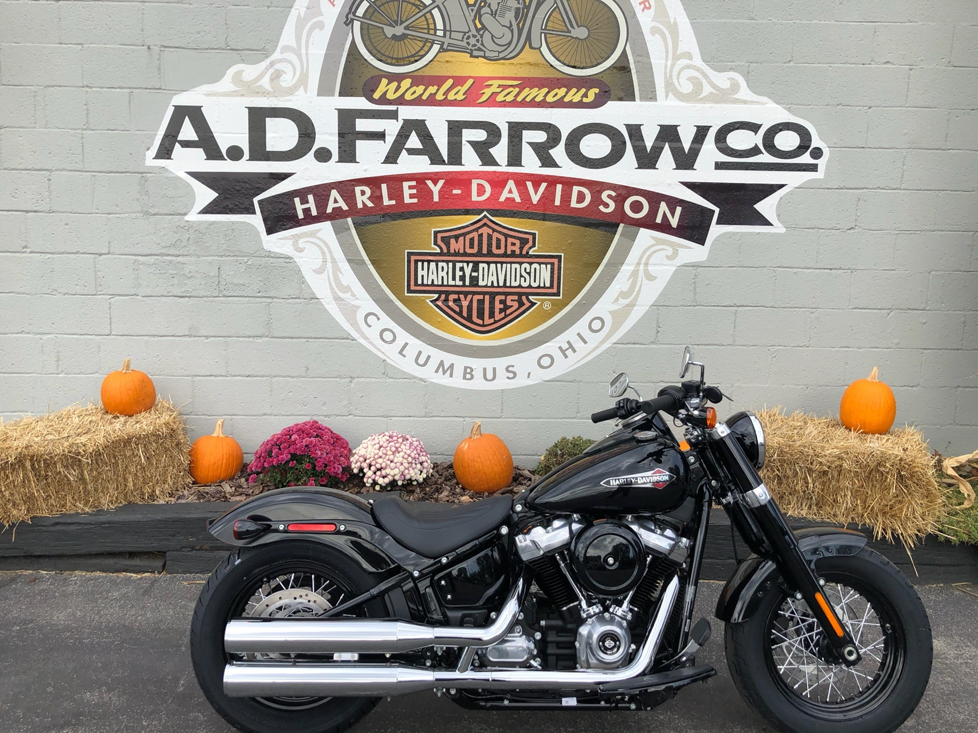 2020 Harley-Davidson FLSL in Sunbury, Ohio - Photo 1