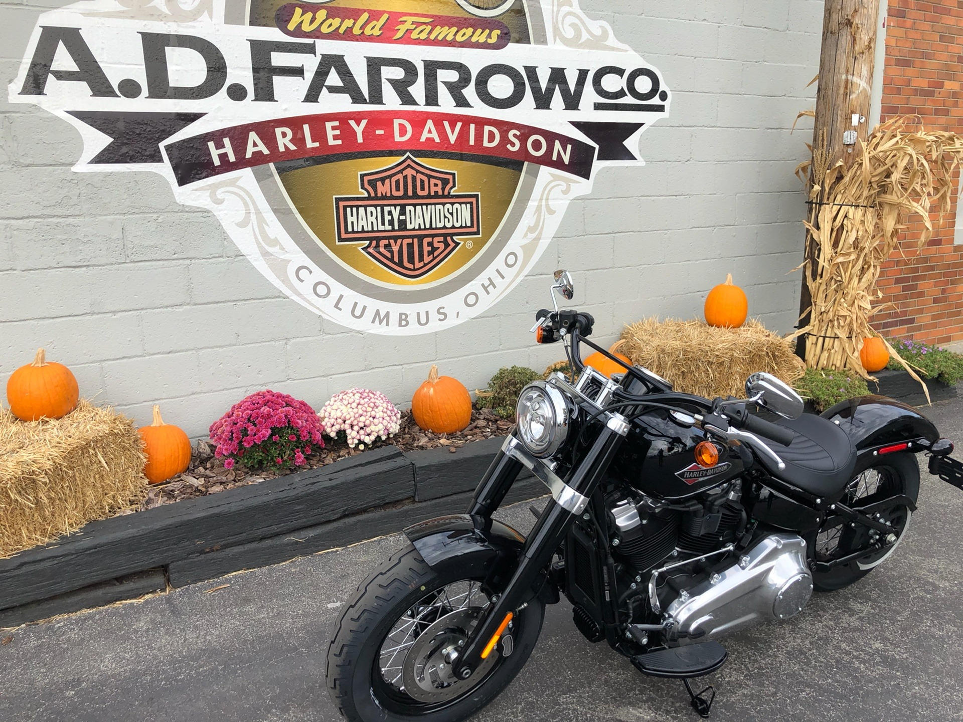 2020 Harley-Davidson FLSL in Sunbury, Ohio - Photo 5