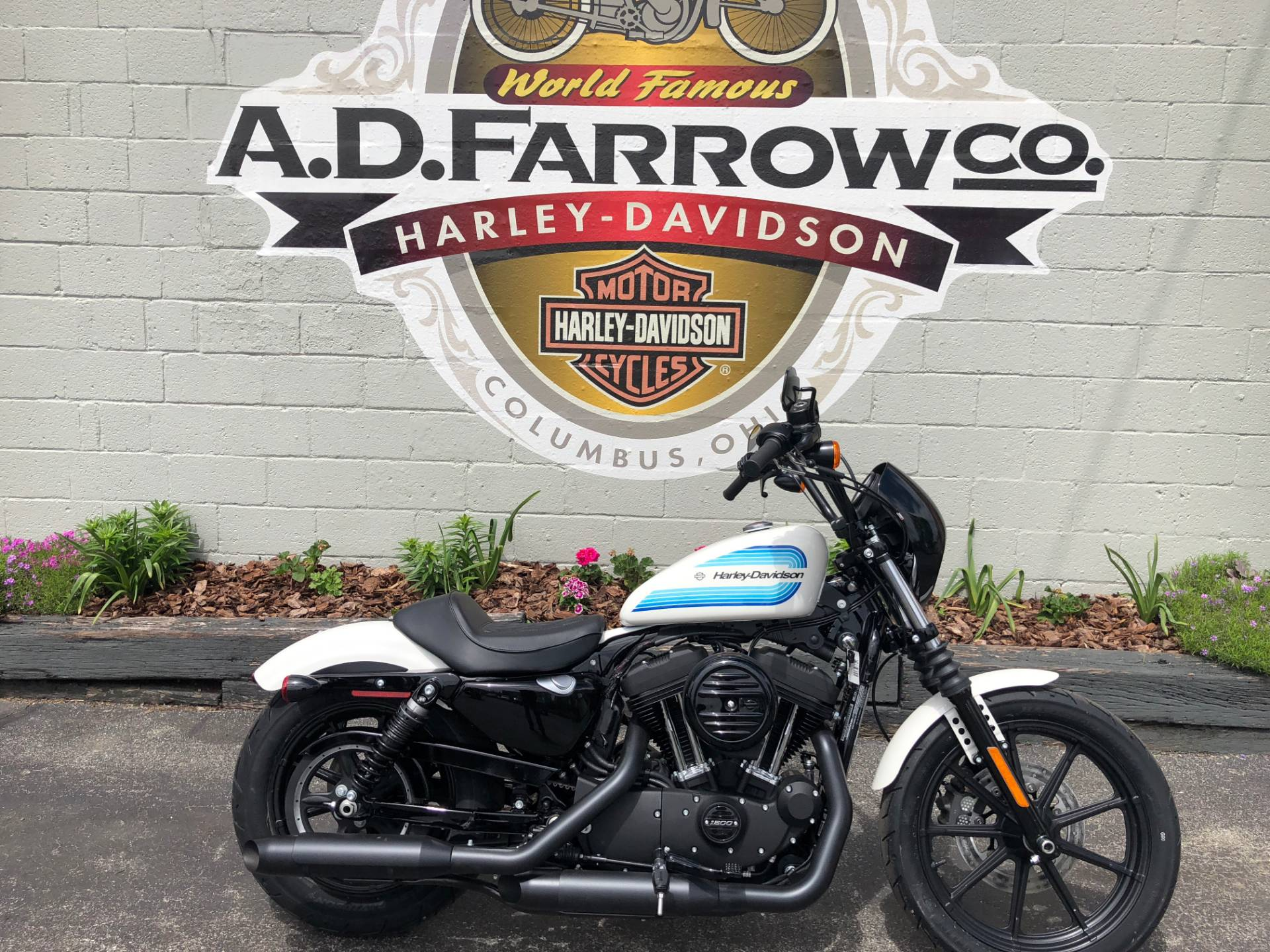 2019 Harley-Davidson Iron 1200™ in Sunbury, Ohio - Photo 3