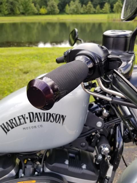 2015 Harley-Davidson Iron 883™ in Sunbury, Ohio - Photo 6