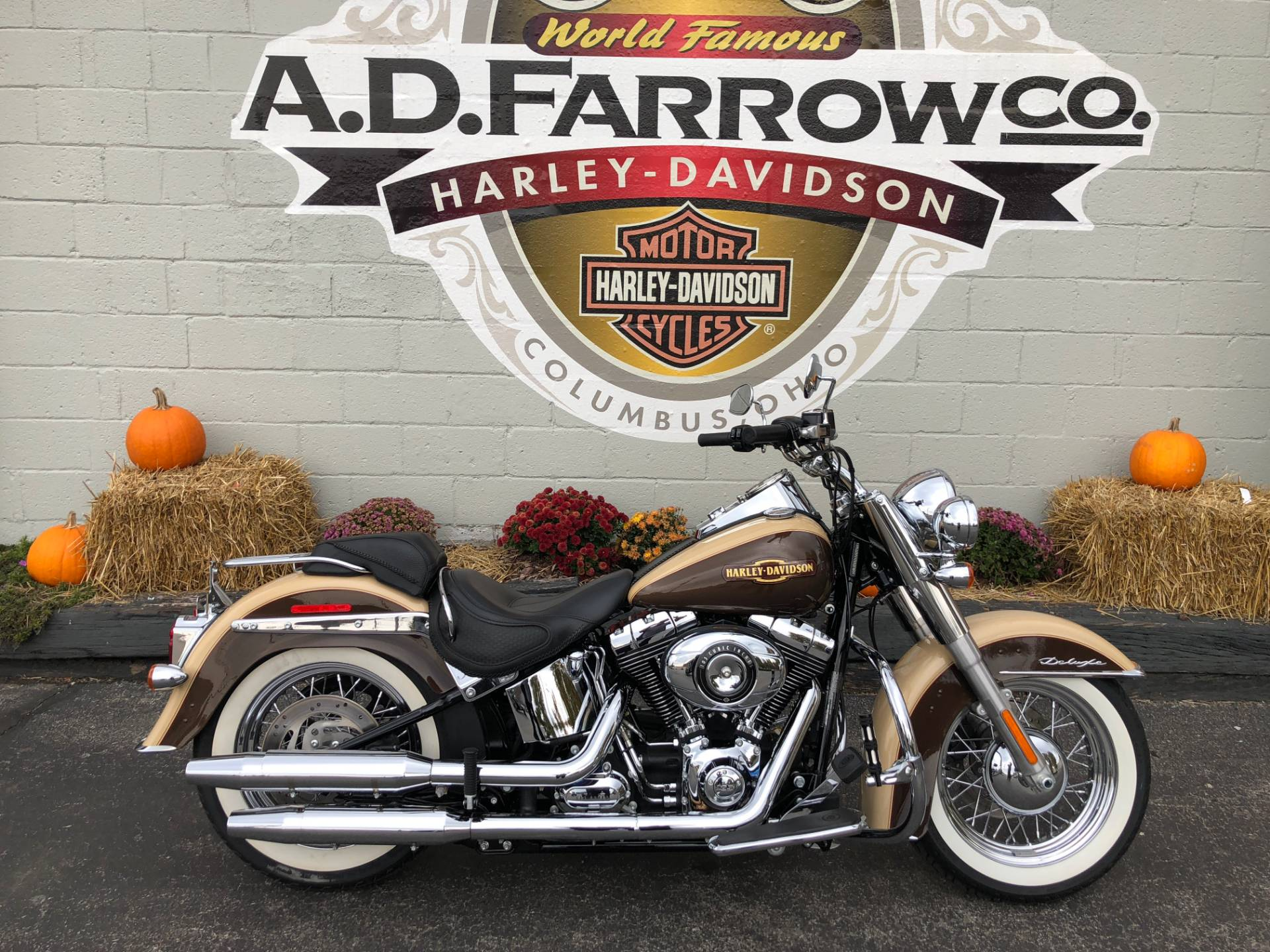 2014 Harley-Davidson Softail® Deluxe in Sunbury, Ohio