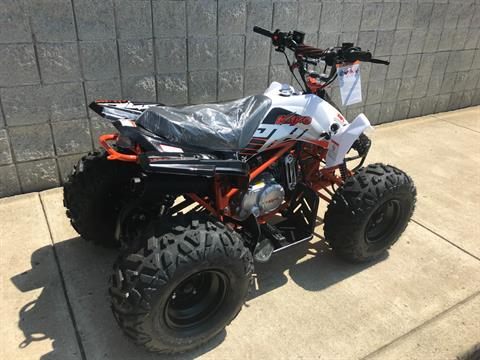 2018 Kayot PREDATOR 125 in Monroe, Michigan