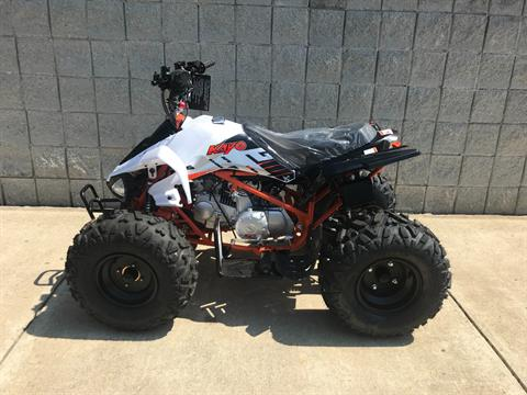 2018 Kayot PREDATOR 125 in Monroe, Michigan - Photo 4
