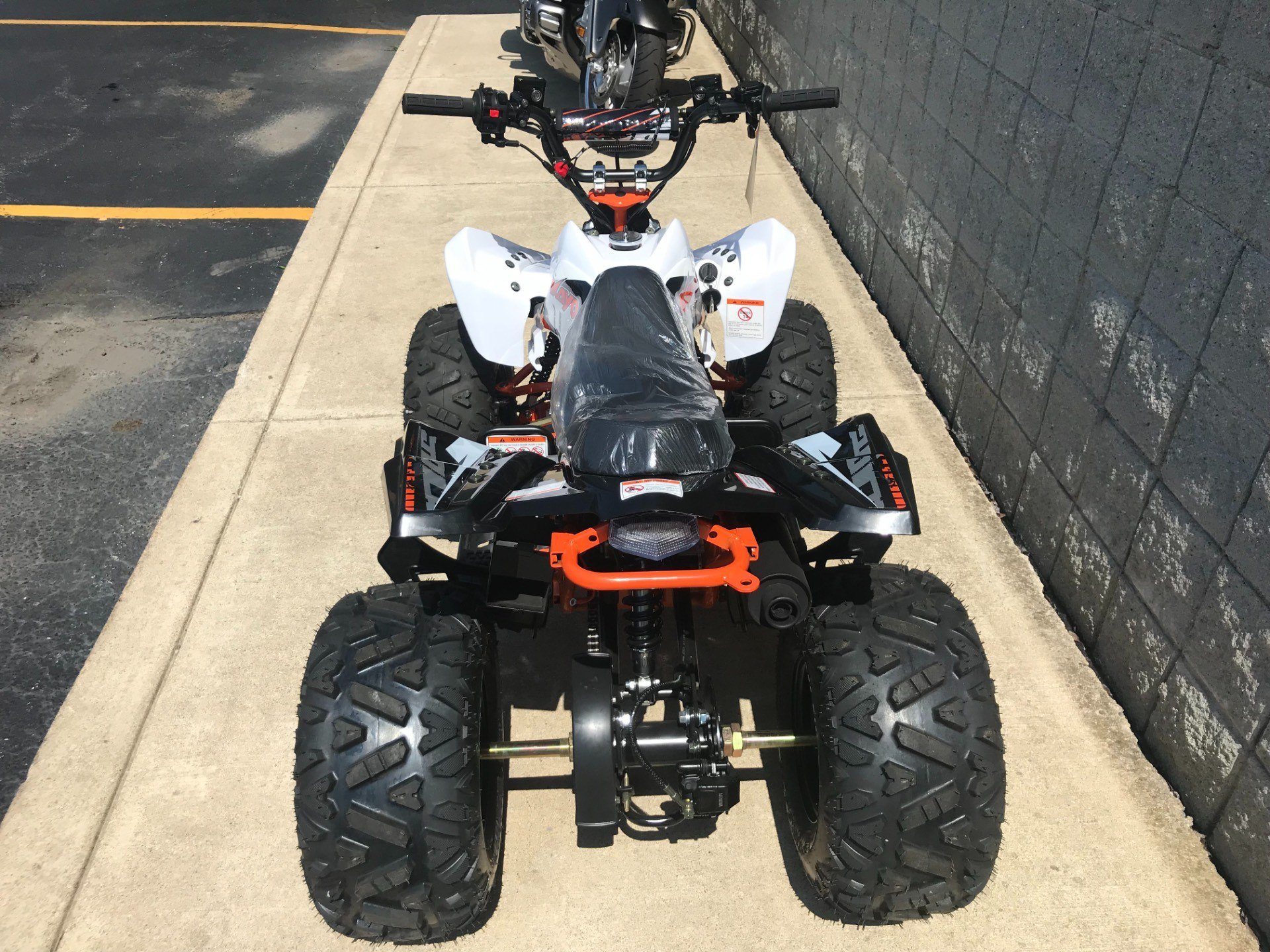 2018 Kayot PREDATOR 125 in Monroe, Michigan - Photo 7