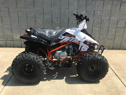 2018 Kayot PREDATOR 125 in Monroe, Michigan - Photo 8