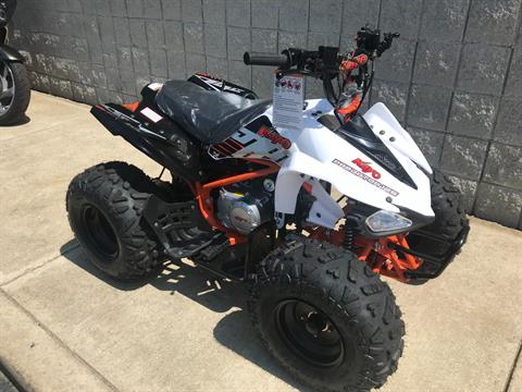 2018 Kayot PREDATOR 125 in Monroe, Michigan - Photo 3