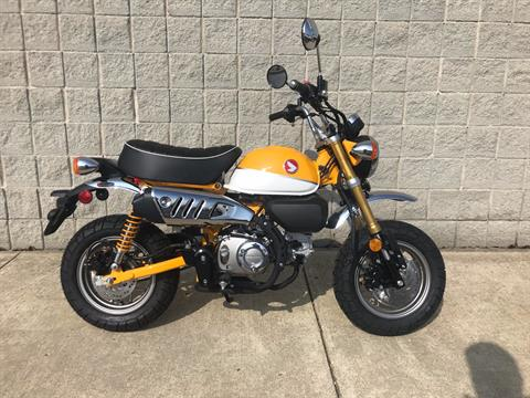 2019 Honda Monkey in Monroe, Michigan - Photo 1