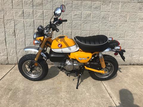 2019 Honda Monkey in Monroe, Michigan - Photo 7