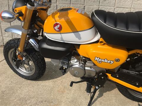 2019 Honda Monkey in Monroe, Michigan - Photo 10