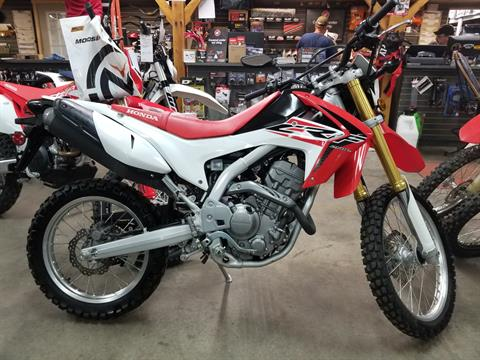 2015 Honda CRF®250L in Spring Mills, Pennsylvania - Photo 1
