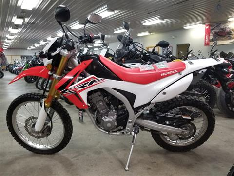 2015 Honda CRF®250L in Spring Mills, Pennsylvania - Photo 2