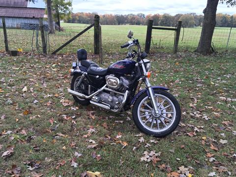 2000 Harley-Davidson Sportster 883 Low Custom in Greer, South Carolina