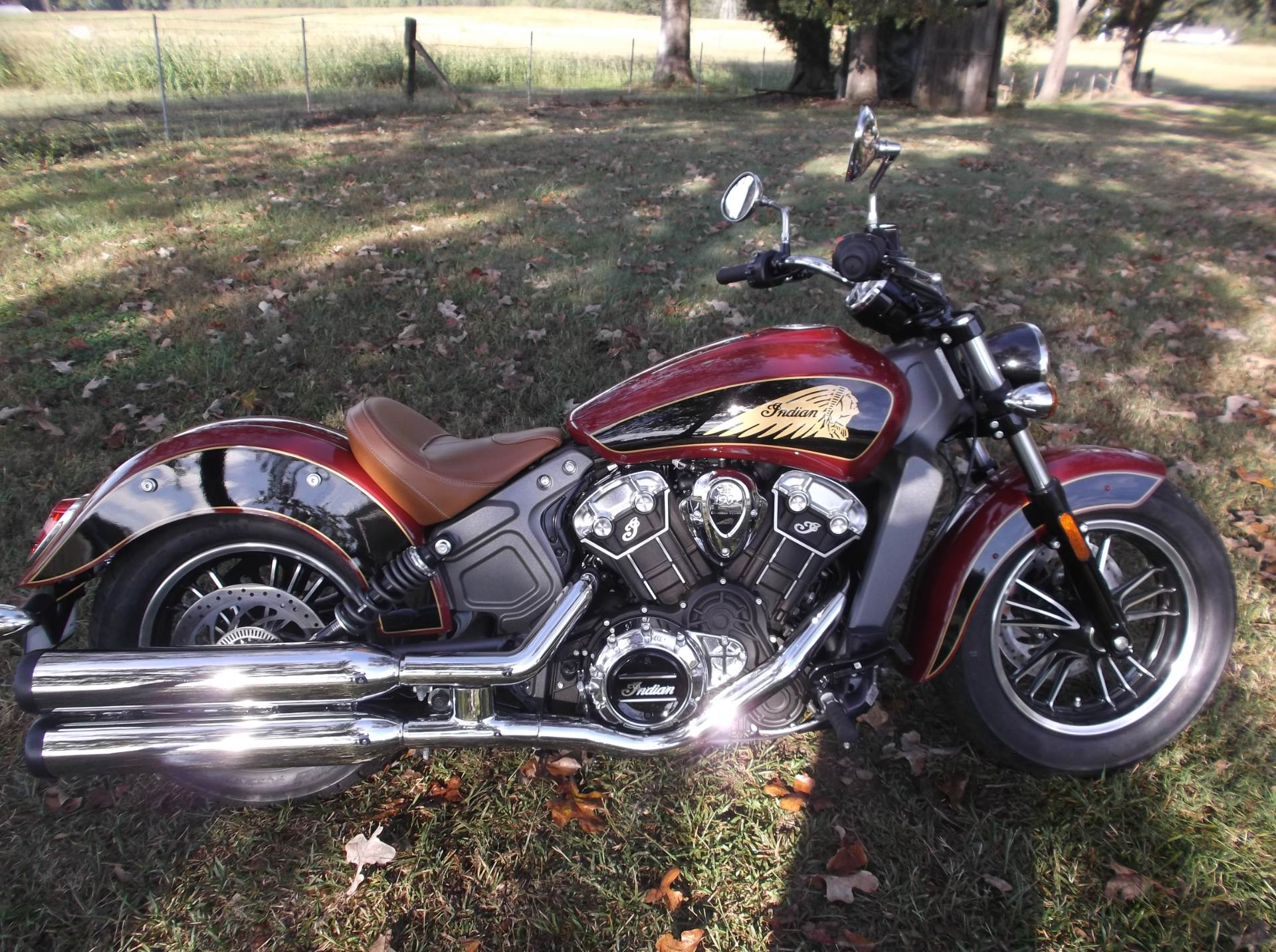2019 Indian Scout® ABS in Greer, South Carolina