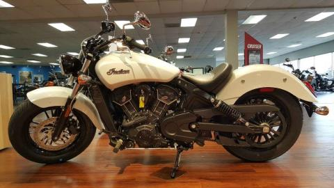 2016 Indian Scout® Sixty Pearl White in Knoxville, Tennessee